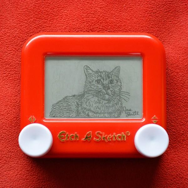 Cat Sample Etch A Sketch
