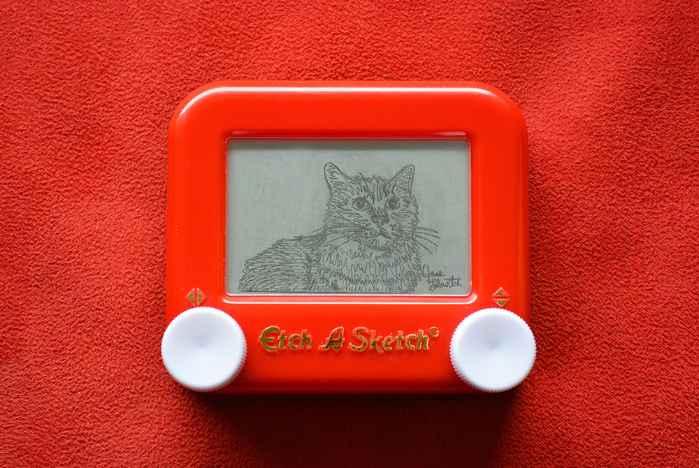 Cat Sample Etch A Sketch