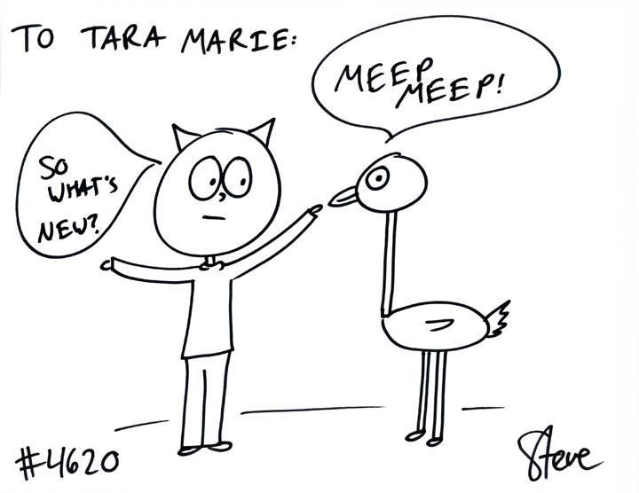 Cat #4620